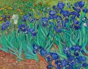 Van Gough Irises
